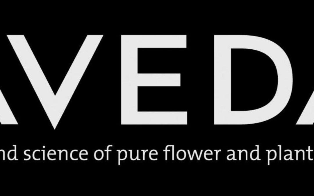 The Salon uses Aveda Products!
